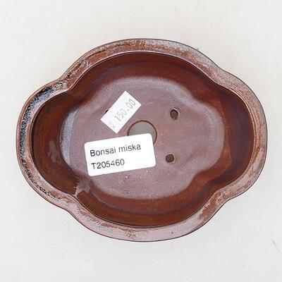 Keramische Bonsai-Schale 12 x 10 x 4,5 cm, Farbe braun - 3