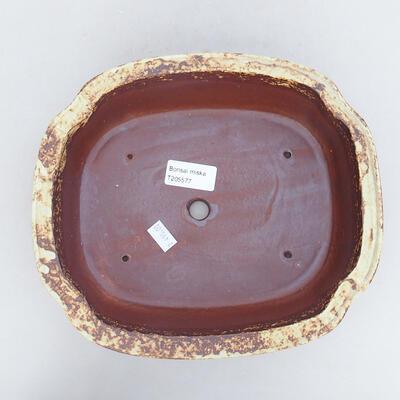 Keramische Bonsai-Schale 23,5 x 20 x 7 cm, gelbbraune Farbe - 3