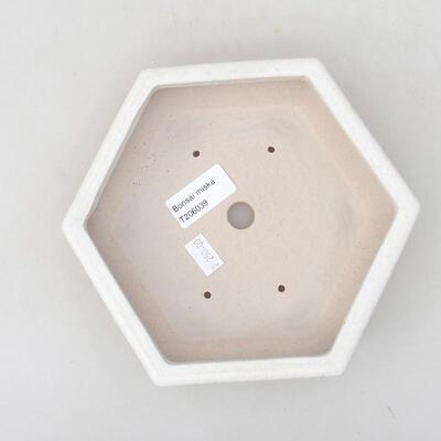 Keramische Bonsai-Schale 18 x 16 x 3,5 cm, weiße Farbe - 3