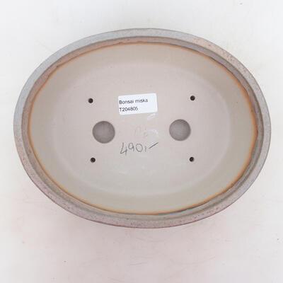 Bonsai-Schale 22,5 x 17,5 x 7 cm, grau-beige Farbe - 3