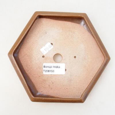 Bonsaischale aus Keramik 13 x 15 x 3,5 cm, Farbe braun - 3