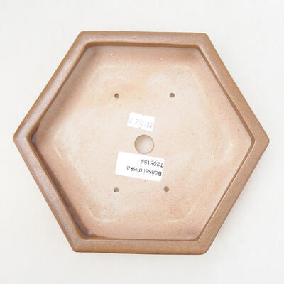 Bonsaischale aus Keramik 15 x 17 x 4 cm, Farbe braun - 3
