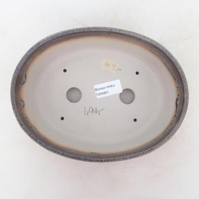 Bonsai-Schale 22 x 16,5 x 6 cm, grau-beige Farbe - 3