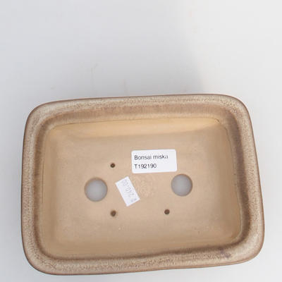 Keramik Bonsaischale 17 x 12 x 6 cm, Farbe braun - 3