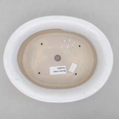 Keramische Bonsai-Schale 22 x 18 x 6,5 cm, weiße Farbe - 3