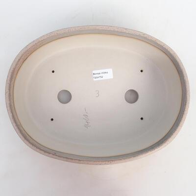 Bonsai-Schale 31 x 24 x 8,5 cm, grau-beige Farbe - 3