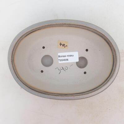Bonsai-Schale 18 x 13 x 6 cm, Farbe grau - 3