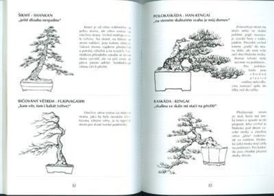 Das Buch nicht nur Bonsai in einem Wohnblock - 3