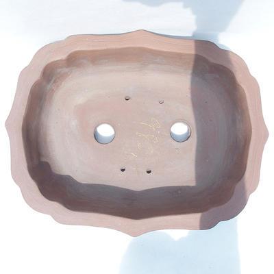 Bonsai-Schale 49 x 39 x 12 cm - 3