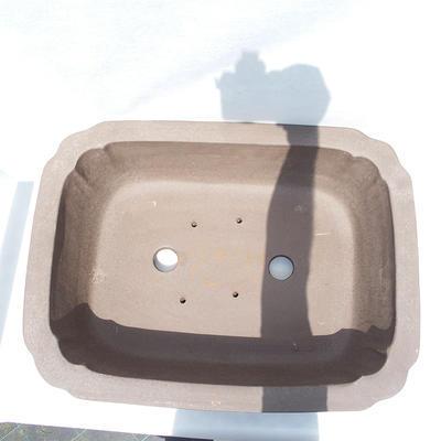 Bonsai-Schale 51 x 39 x 16 cm - 3
