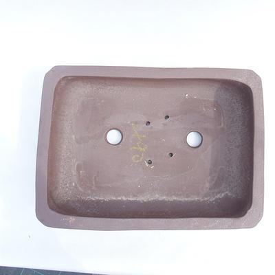Bonsai-Schüssel 35 x 24 x 9 cm - 3