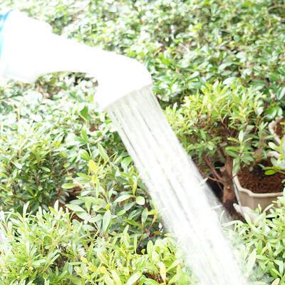 Bonsai-Flaschensprinkler aus Kunststoff 2 Stück - 3