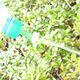 Bonsai-Sprinkler für PET-Flasche 20 Stück - 3/5