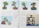 Bonsai und Japanischer Garten Nr.52 - 4/7