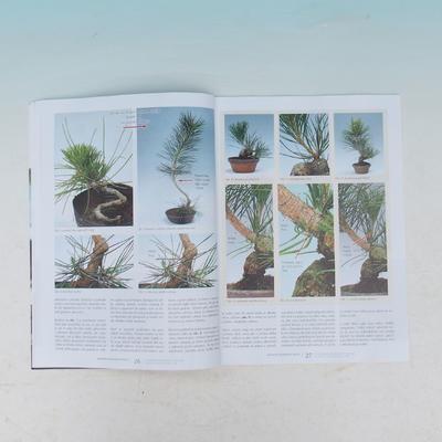 Bonsai und Japanischer Garten Nr.54 - 4