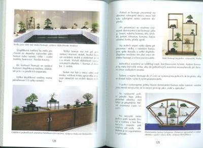 Das Buch nicht nur Bonsai in einem Wohnblock - 4