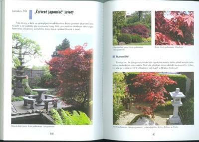 Das Buch nicht nur Bonsai in einem Wohnblock - 5
